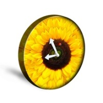 Sunflower-3D-Yellow-Wall-Clock-for-Children-Living-Room-Cute-Balcony-Sunny-Style-Decoracion-Hogar-Relogio.jpg_220x220